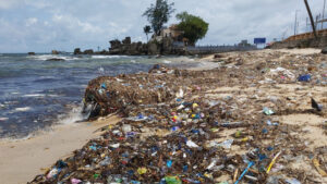 rác tấp ngập bãi biển dinh cậu, bí thư phú quốc cử hơn 200 trăm người dọn sạch Rác tấp ngập bãi biển Dinh Cậu, Bí thư Phú Quốc cử hơn 200 trăm người dọn sạch 77c2ee38edc191a976da27aad697b437 300x169