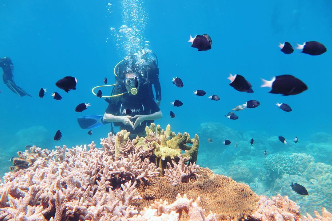 Công viên san hô ở Phú Quốc những cái nhất của phú quốc Những cái nhất của Phú Quốc – Nơi được đề xuất lên Thành Phố. C  ng vi  n san h       Ph   Qu   c