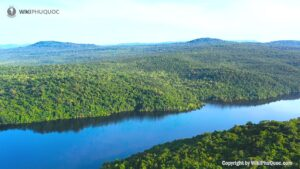 Hồ Dương Đông - bức tranh sơn thủy hài hòa (ảnh sưu tầm) hỒ dƯƠng ĐÔng - Hồ-Dương-Đông-bức-tranh-sơn-thủy-hài-hòa-ảnh-sưu-tầm-300x169 - HỒ DƯƠNG ĐÔNG – hồ nước ngọt xanh, sạch, đẹp lớn nhất Phú Quốc. phú quốc - H%E1%BB%93-D%C6%B0%C6%A1ng-%C4%90%C3%B4ng-b%E1%BB%A9c-tranh-s%C6%A1n-th%E1%BB%A7y-h%C3%A0i-h%C3%B2a-%E1%BA%A3nh-s%C6%B0u-t%E1%BA%A7m-300x169 - WIKI PHU QUOC || ✅ Trang tin tức Đảo Ngọc Phú Quốc.