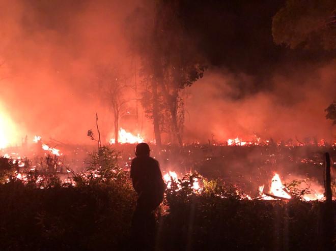 - 00a07f5b3b71e572d2f1edeeed6e9635 - Cháy rừng ở Vườn quốc gia Phú Quốc phú quốc - 00a07f5b3b71e572d2f1edeeed6e9635 - WIKI PHU QUOC || ✅ Trang tin tức Đảo Ngọc Phú Quốc.