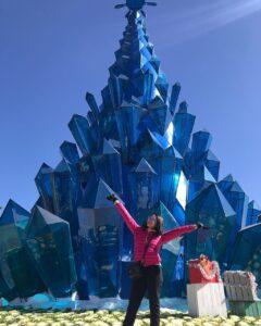 - 38272269206becdb9b509c5c154b6e2f-240x300 - Những cây thông độc đáo, lập kỷ lục Việt Nam qua các mùa Noel