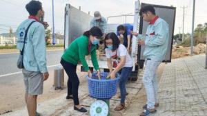 - d228d2b337edf88c06d516da4bdc5a8e-300x169 - Người trẻ ở Phú Quốc 'giải cứu' hơn 24 tấn dưa hấu cho nông dân Gia Lai