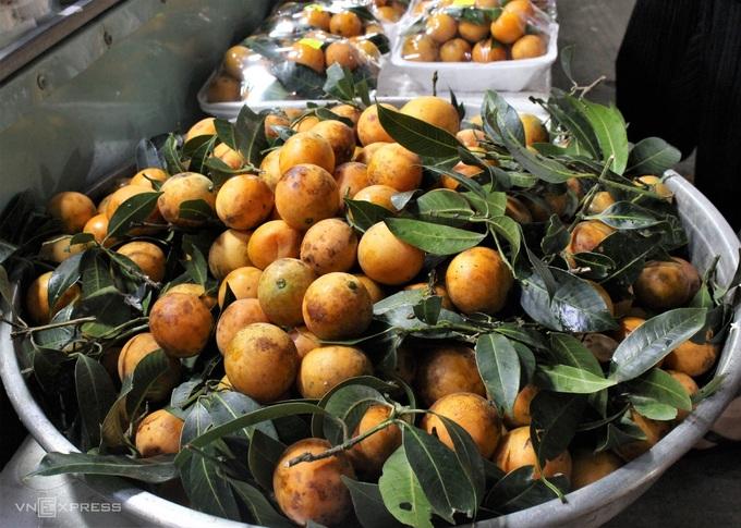 Các loại trái cây tươi trên đảo cũng được bán theo mùa. Hiện là mùa thanh trà ở Phú Quốc, loại trái này mọc tự nhiên trên núi nên còn có tên là sơn trà.Thanh trà trên đảo có trái tròn, căng mọng và màu sậm hơn loại trái trên đất liền, vị thanh chua, ngọt dịu. Du khách có thể chế biến nhiều món ngon từ thanh trà như nấu canh chua, kho cá, dầm đá đường, làm mứt hoặc chấm muối ớt ăn tươi. - WikiLand  - dac-san-phu-quoc-07-jpg-5079-1-4814-8152-1620723181 - 8 đặc sản làm quà trong chợ đêm Phú Quốc