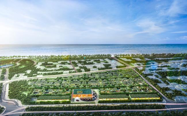 Phú Quốc và tham vọng phát triển trong 5 năm tới  - image001-1625201034741495220269-0-113-823-1430-crop-1625201045169-63761352287788 - Phú Quốc và tham vọng phát triển trong 5 năm tới