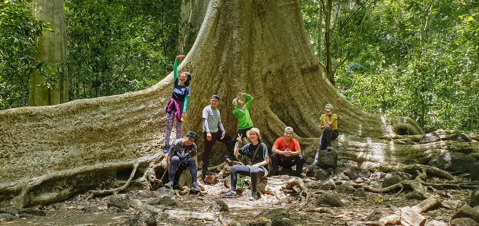 vuon quoc gia Phong Nha - Ke Bang anh 3  - 69 - Vườn quốc gia nào có diện tích lớn nhất Việt Nam?