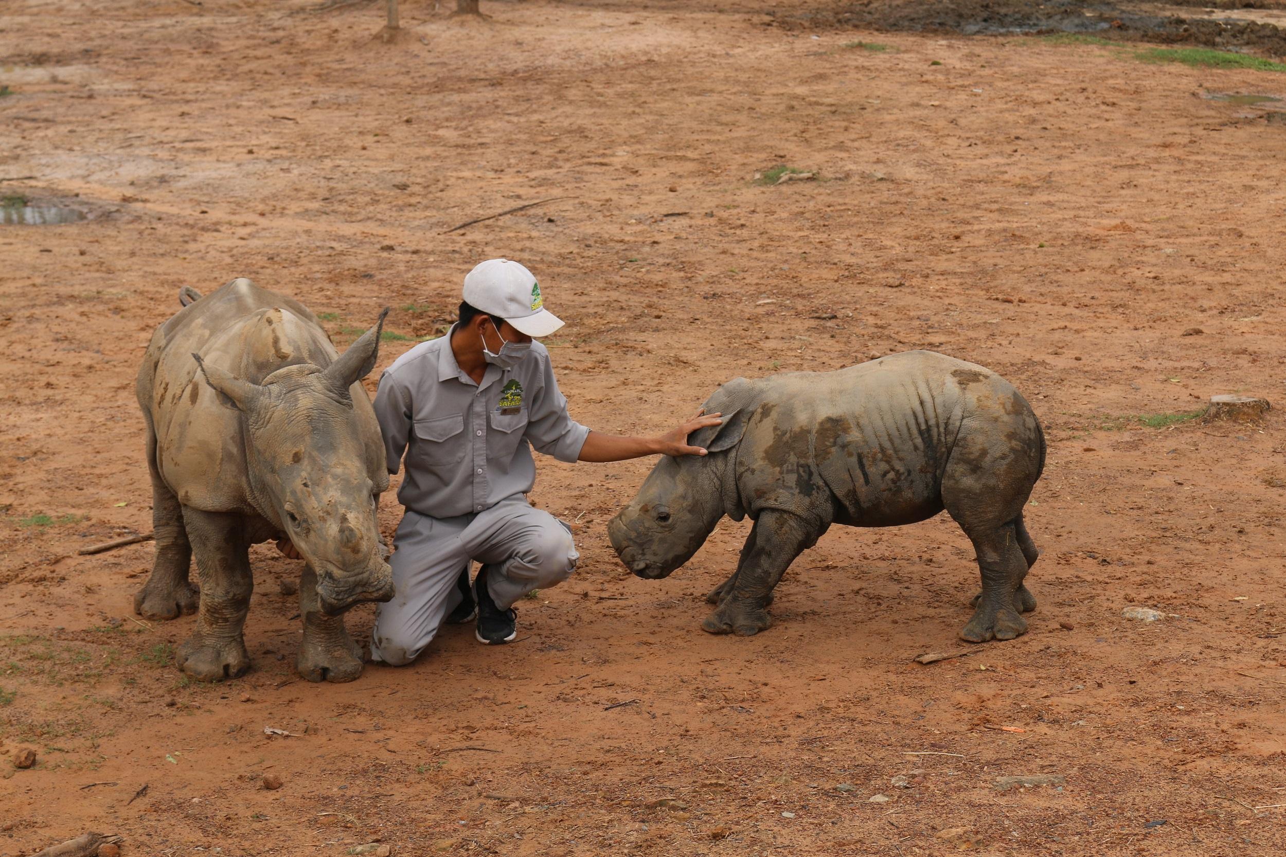 Vinpearl Safari Phu Quoc anh 5  - img_1882 - Giữ trọn 'vùng xanh' hoang dã trên đảo ngọc