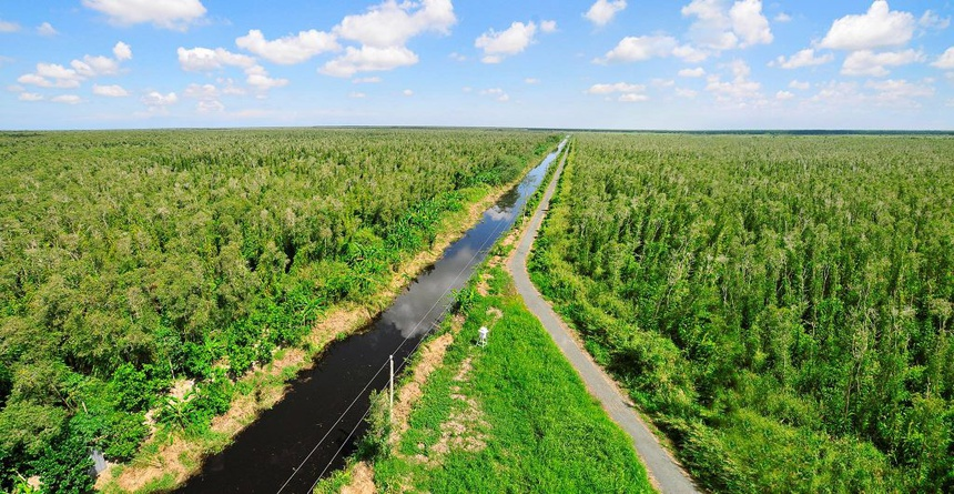 vuon quoc gia Phong Nha - Ke Bang anh 6  - vuonquocgiauminhha_1_1024x530 - Vườn quốc gia nào có diện tích lớn nhất Việt Nam?
