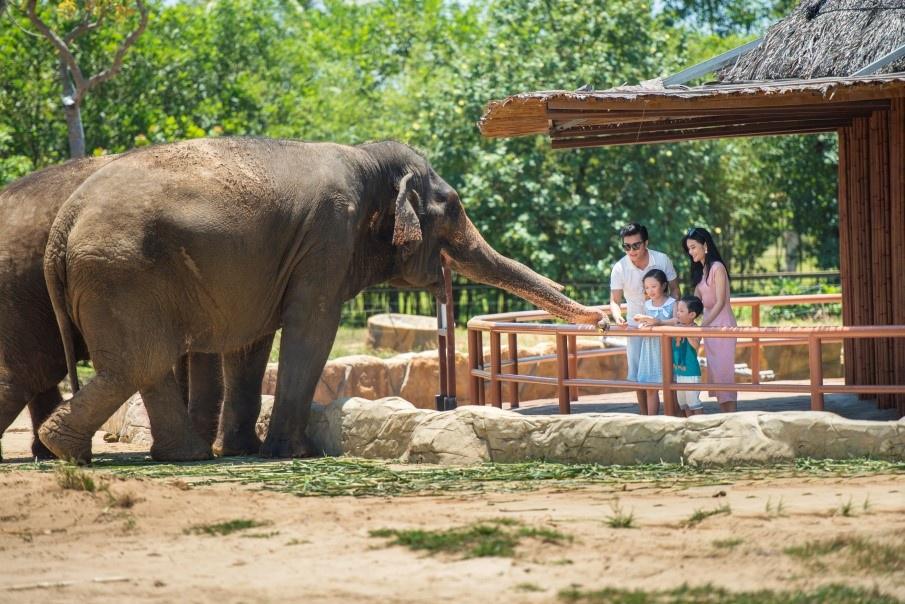 the gioi hoang da anh 3  - a3 - Nhập vai 'nhà động vật học' tại thế giới hoang dã Vinpearl Safari