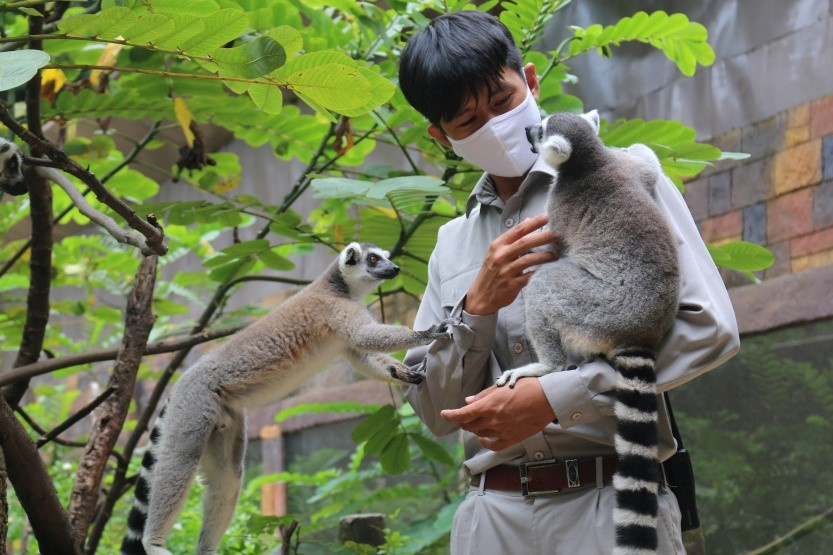 the gioi hoang da anh 8  - a4 - Nhập vai 'nhà động vật học' tại thế giới hoang dã Vinpearl Safari